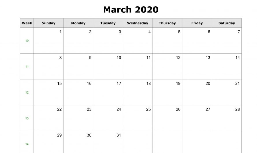 Fillable March 2020 Calendar PDF Word Excel | Online Editable Calendar For March 2020 Free Download