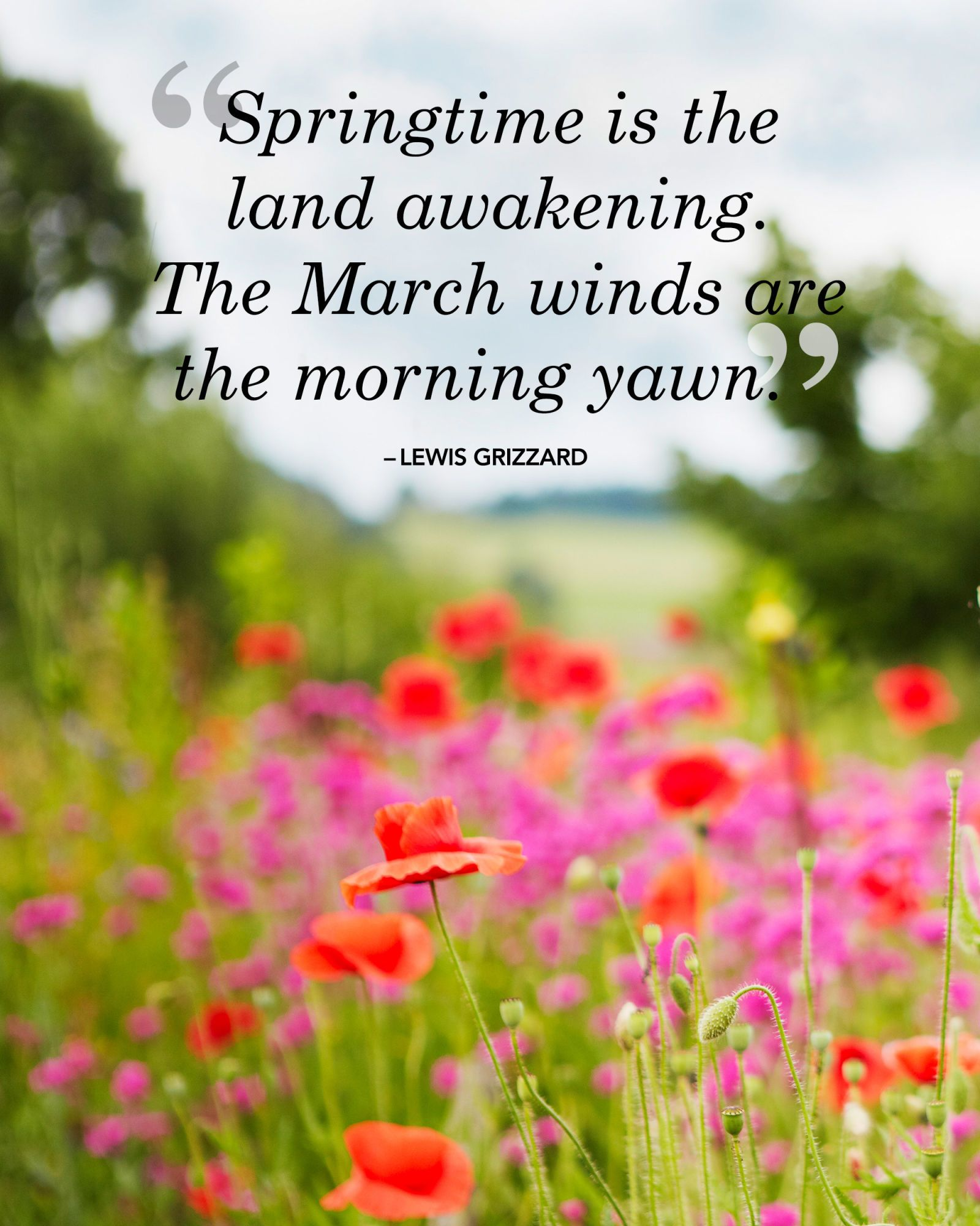 March Sayings for Facebook