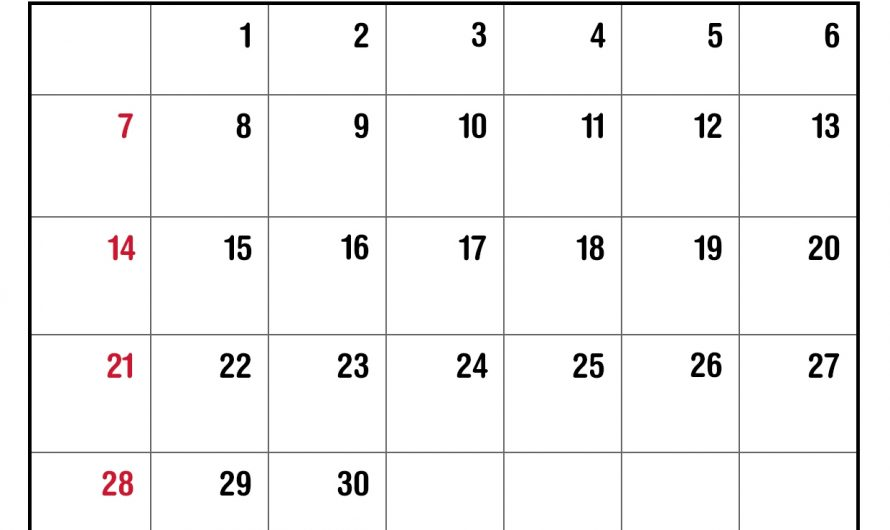 Monthly June 2020 Calendar Printable Template in PDF Word Excel Notes